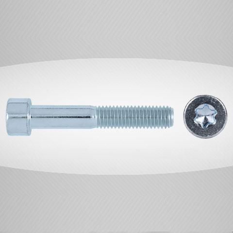 ISO14579 Torks İmbus