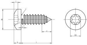 ISO14585 Torks Sac Vidası